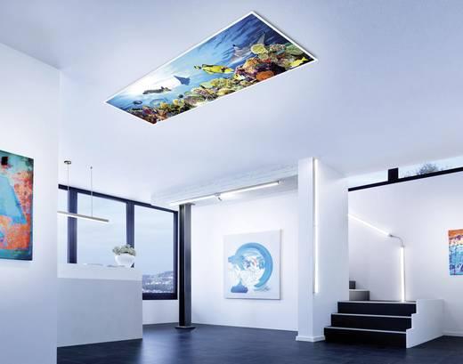 led panel 28 w neutral wei leuchtendirekt flatdia 14401 16 wei kaufen. Black Bedroom Furniture Sets. Home Design Ideas