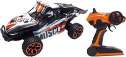 RC model auta Buggy Amewi Extreme D5 22220, 1:18