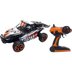 RC model auta Buggy Amewi Extreme D5 22220, 1:18