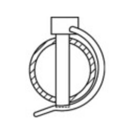 Rohrklappstecker 50 St. TOOLCRAFT 149921
