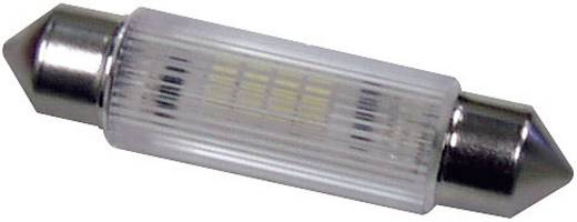 LED-Soffitte S8 Rot 12 V/DC, 12 V/AC 320 mcd Signal Construct MSOG113902