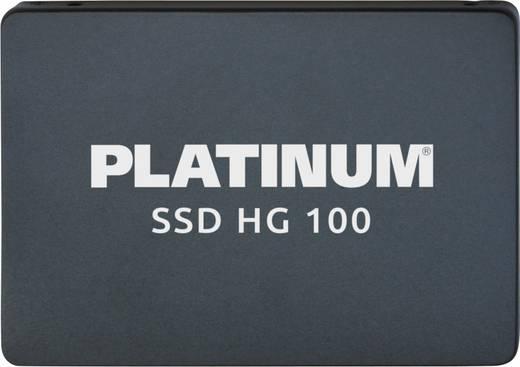 Platinum HG100 Interne SSD 6.35 cm (2.5 Zoll) 480 GB Retail 125871 SATA III