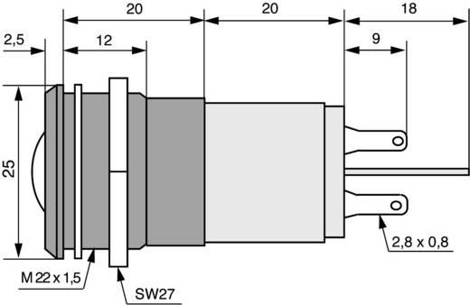 LED-Signalleuchte Grün 24 V/DC, 24 V/AC CML 195A1351MUC
