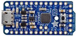 Image of Entwicklungsboard Adafruit Pro Trinket - 3V 12MHz Adafruit 2010