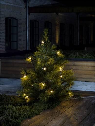 weihnachtsbaum beleuchtung au en netzbetrieben 20 gl hlampe klar beleuchtete l nge m. Black Bedroom Furniture Sets. Home Design Ideas
