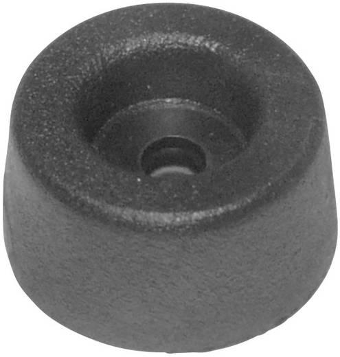 Gerätefuß schraubbar Schwarz (Ø x H) 17.5 mm x 9 mm 1 St.