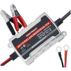 Nabíječka autobaterie Dino KRAFTPAKET 136303 s funkcí monitorování 0.75 A