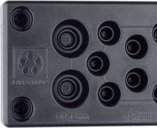Kabeldurchführungsplatte Klemm-Ø (max.) 16 mm Polycarbonat LappKabel 52220065 1 St.