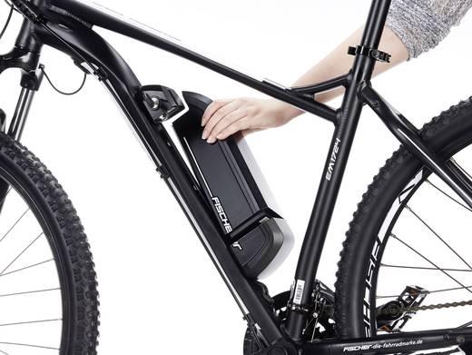 e bike mit trittantrieb fischer fahrrad em 1724 s1 herren mtb proline schwarz matt li ion 48. Black Bedroom Furniture Sets. Home Design Ideas