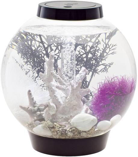 oase 45616 aquarium 15 l mit led beleuchtung. Black Bedroom Furniture Sets. Home Design Ideas