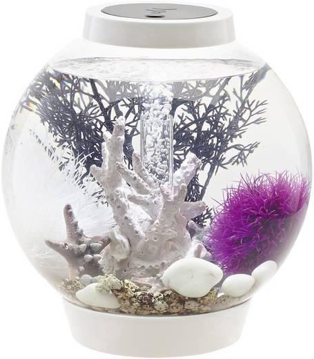 aquarium 15 l mit led beleuchtung oase 45626 kaufen. Black Bedroom Furniture Sets. Home Design Ideas