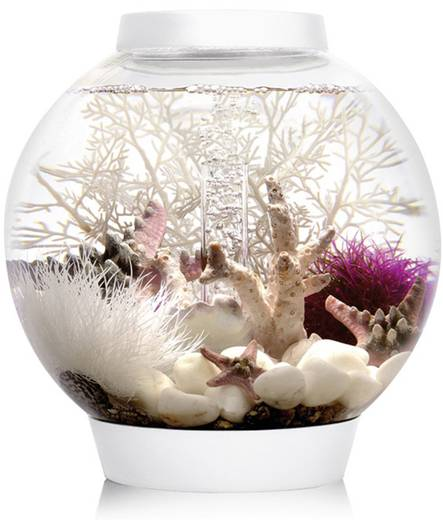 aquarium 15 l mit led beleuchtung oase 45626. Black Bedroom Furniture Sets. Home Design Ideas