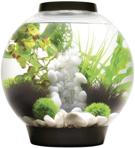 Oase 45664 Aquarium 30 l mit LED-Beleuchtung kaufen