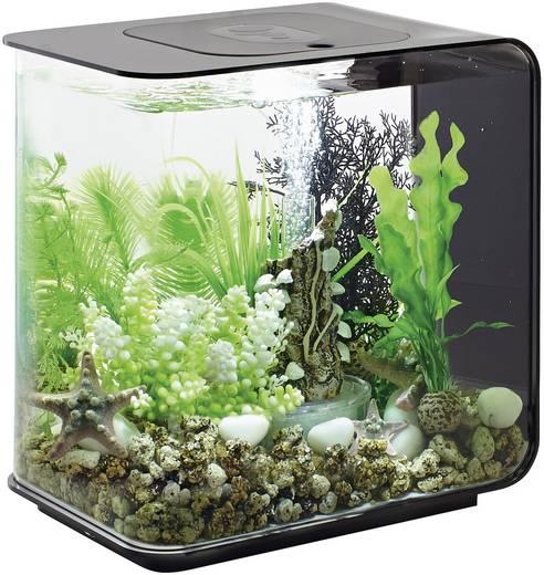 oase 45910 aquarium 15 l mit led beleuchtung. Black Bedroom Furniture Sets. Home Design Ideas