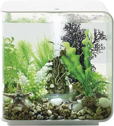 Oase 45915 Aquarium 15 l mit LED-Beleuchtung kaufen