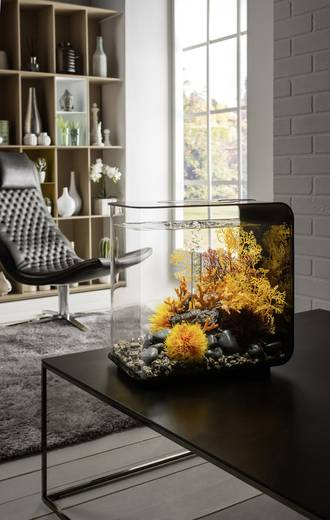 aquarium 30 l mit led beleuchtung oase 45920 kaufen. Black Bedroom Furniture Sets. Home Design Ideas