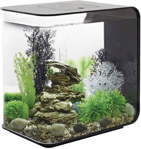aquarium 30 l mit led beleuchtung oase 45920 kaufen. Black Bedroom Furniture Sets. Home Design Ideas