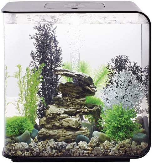 aquarium 30 l mit led beleuchtung oase 45920. Black Bedroom Furniture Sets. Home Design Ideas