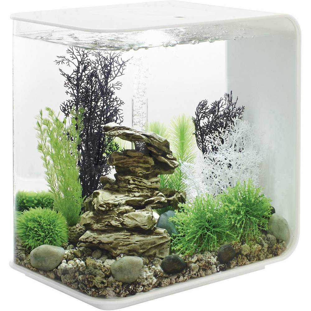 aquarium 30 l mit led beleuchtung oase 45925 im conrad online shop 1528159. Black Bedroom Furniture Sets. Home Design Ideas