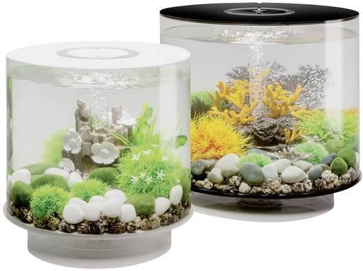 aquarium 15 l mit led beleuchtung oase 45930 kaufen. Black Bedroom Furniture Sets. Home Design Ideas