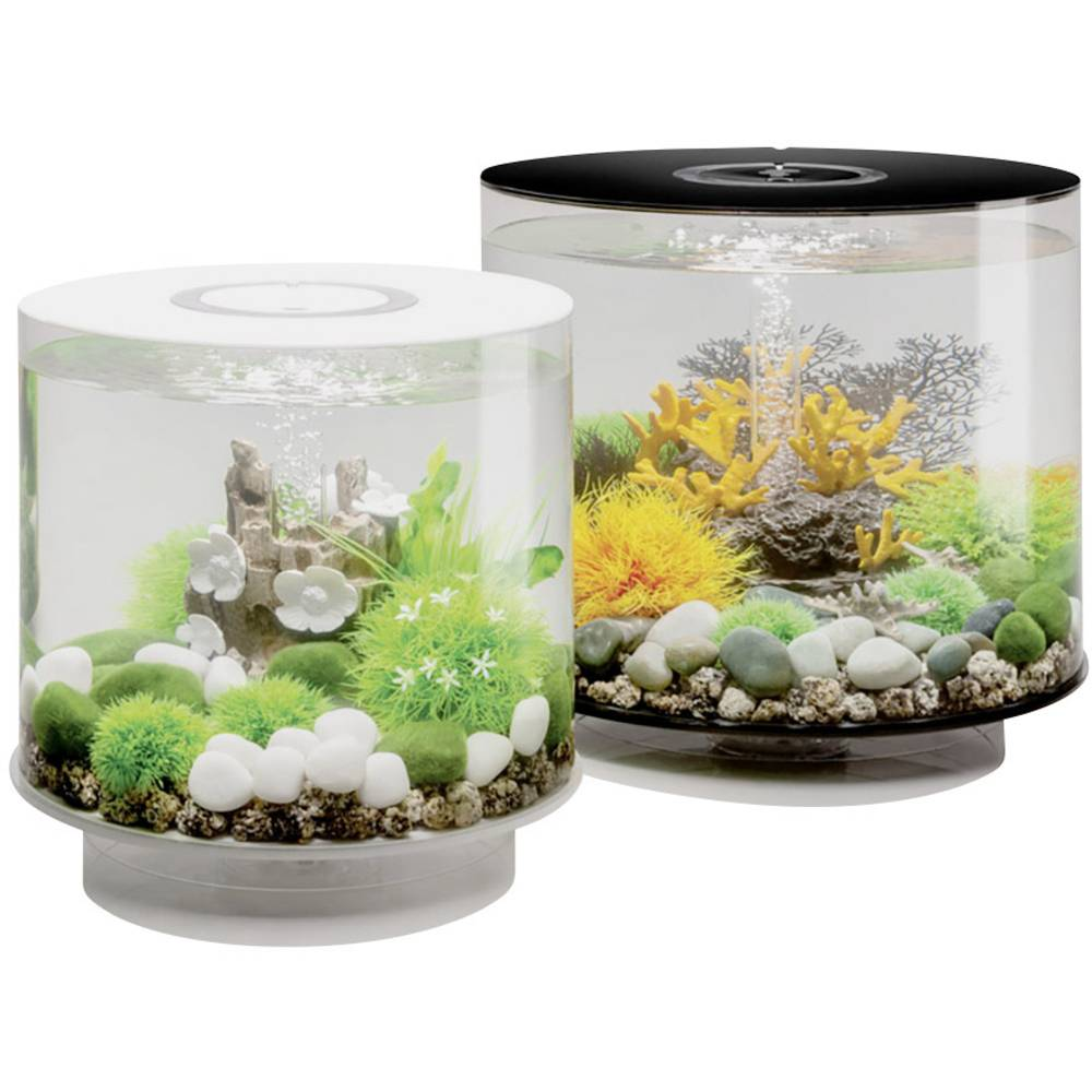 oase 45930 aquarium 15 l mit led beleuchtung im conrad online shop 1528160. Black Bedroom Furniture Sets. Home Design Ideas