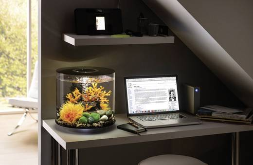 aquarium 15 l mit led beleuchtung oase 45940 kaufen. Black Bedroom Furniture Sets. Home Design Ideas