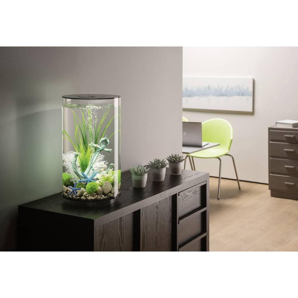 oase 45960 aquarium 30 l mit led beleuchtung im conrad online shop 1528163. Black Bedroom Furniture Sets. Home Design Ideas