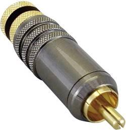 Cinch konektor TRU COMPONENTS zástrčka, rovná, pólů 2, černá, pozlacený, 1 ks