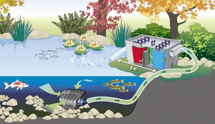 Wasserkreislauf eines Teichfilters