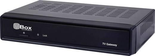 VBox XTi-3442 IP-Receiver Aufnahmefunktion Anzahl Tuner: 2