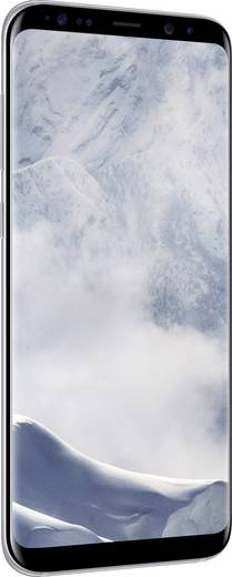 Samsung Galaxy S8+ LTE-Smartphone 15.7 cm (6.2 Zoll) 2.3 GHz Octa Core 64 GB 12 Mio. Pixel Android™ 7.0 Nougat Silber