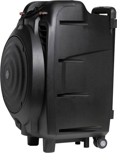 mobiler pa lautsprecher 25 4 cm 10 zoll denver tsp 502 akkubetrieben netzbetrieben 1 st. Black Bedroom Furniture Sets. Home Design Ideas
