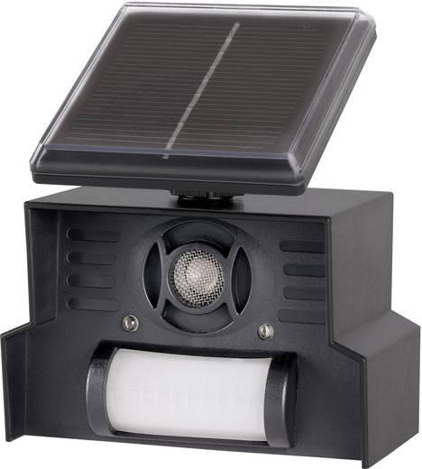 vogelvertreiber multifrequenz led licht gardigo solar repeller wirkungsbereich 100 m 1 st. Black Bedroom Furniture Sets. Home Design Ideas