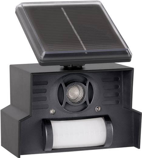 vogelvertreiber gardigo solar repeller multifrequenz led. Black Bedroom Furniture Sets. Home Design Ideas