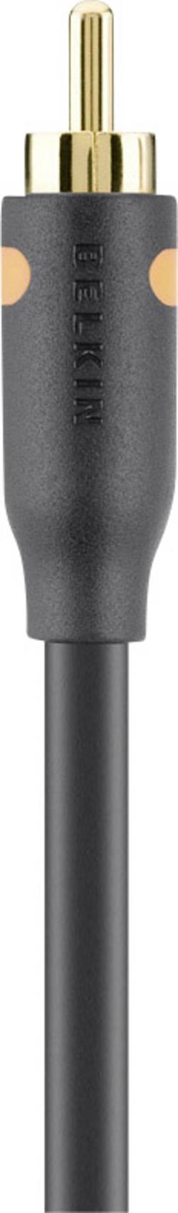 Image of Belkin Cinch-Digital Digital-Audio Anschlusskabel [1x Cinch-Stecker - 1x Cinch-Stecker] 2 m Schwarz