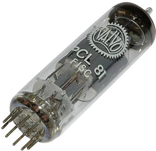 Elektronenröhre PCL 81 Triode-Endpentode 150 V, 200 V 1.3 mA, 30 mA Polzahl: 9 Sockel: Noval Inhalt 1 St.