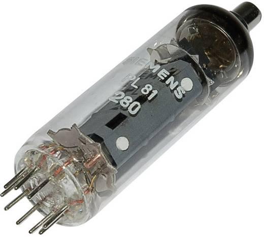 Elektronenröhre PL 81 = 21 A 6 Pentode 170 V 45 mA Polzahl: 9 Sockel: Noval Inhalt 1 St.