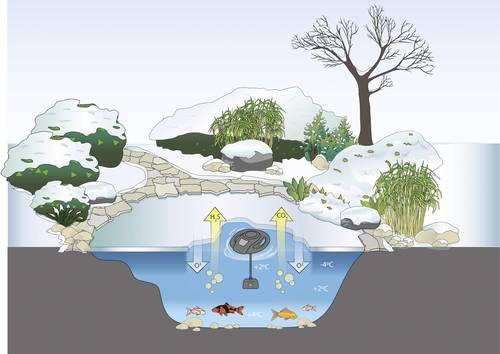 Teich auf den Winter vorbereiten