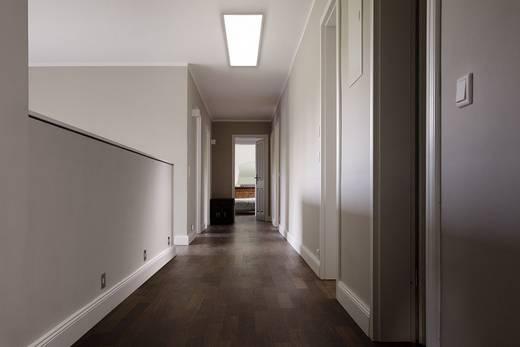 LED-Panel 36 W Warm-Weiß OSRAM Planon Pure 4058075035430 Weiß kaufen
