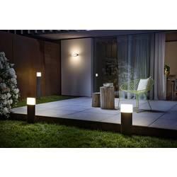 LED vonkajšie nástenné osvetlenie 13 W N/A LEDVANCE ENDURA® STYLE ELLIPSE L 4058075205079 tmavosivá