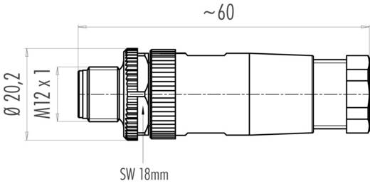 Sensor-/Aktor-Steckverbinder, unkonfektioniert M12 Stecker, gerade Polzahl: 4 Binder 99-0429-14-04 1 St.