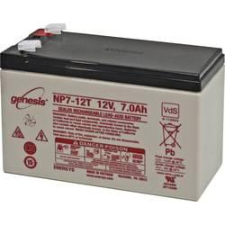 Olovený akumulátor EnerSys Genesis NP7-12-WT, 7 Ah, 12 V