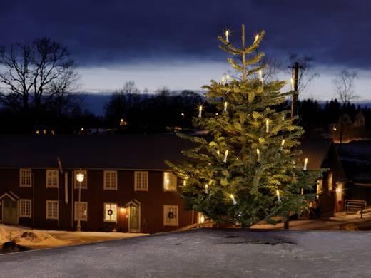 konstsmide 1014 020 weihnachtsbaum beleuchtung au en netzbetrieben 25 led warm wei beleuchtete. Black Bedroom Furniture Sets. Home Design Ideas
