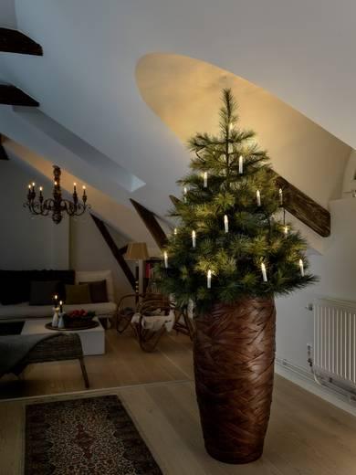 weihnachtsbaum beleuchtung innen netzbetrieben 25 led warm. Black Bedroom Furniture Sets. Home Design Ideas