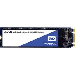 Interný SSD disk SATA M.2 2280 WD Blue™ WDS250G2B0B, 250 GB, Retail, M.2 SATA 6 Gb / s