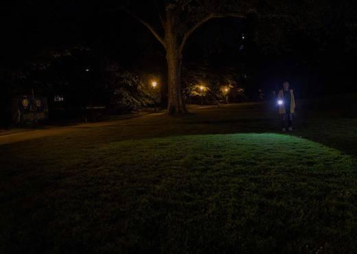 Ledlenser P700 LED Taschenlampe batteriebetrieben 700 lm 80 h 341 g