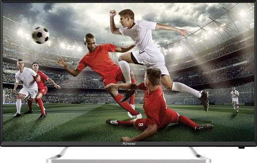 Strong 40FZ4003 LED-TV 101 cm 40 Zoll EEK A (A++ - E) CI+, DVB-C, DVB-S2, DVB-T2, Full HD Schwarz