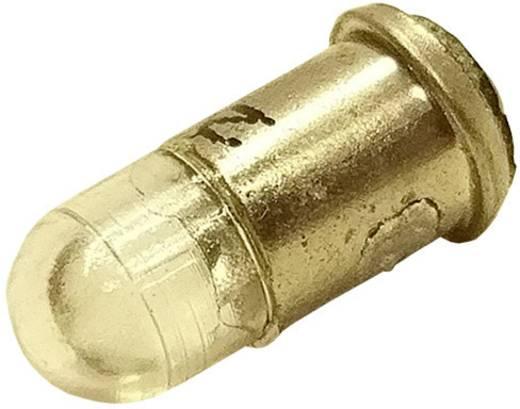 Barthelme LED-Lampe MF6 Warm-Weiß 24 V/DC