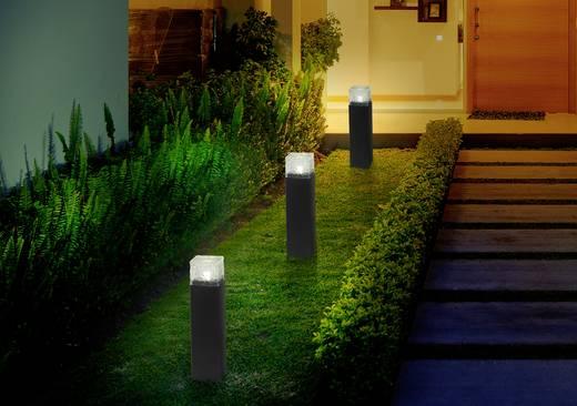 Solar-Gartenleuchte LED Neutral-Weiß Polarlite Iron-Ice Schwarz