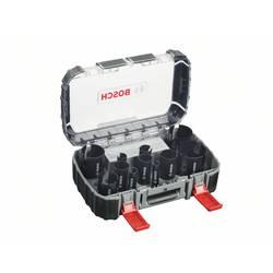 Sada dierovacích píl 15-dielna Bosch Accessories 2608580869, 1 sada